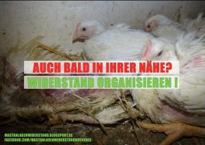 Bald_in_ihrer Naehe_small
